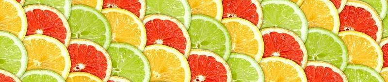 стенавая фото панель лимоны цитрусы недорого